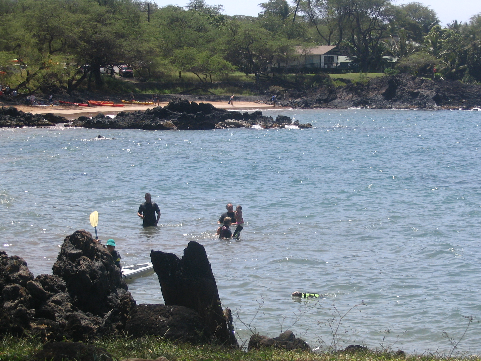 Things to do | MauiIris | Page 2